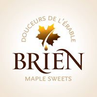 Brian Logo